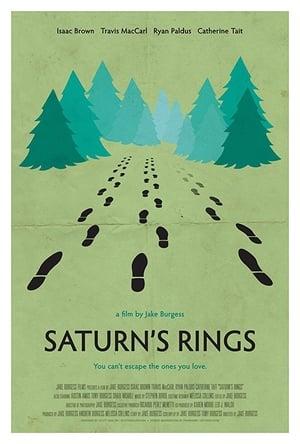 Image Saturn's Rings