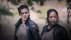 serie Z Nation: 5×3 en streaming