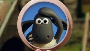 Shaun das Schaf: 5×4