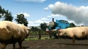 Thomas & Friends Season 13 :Episode 8  Thomas & The Pigs