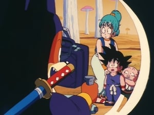 Dragon Ball Season 1 :Episode 10  The Dragon Balls are Stolen!