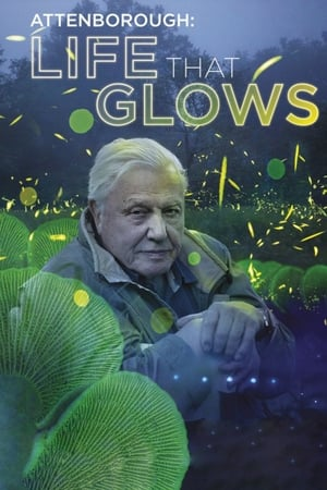 Attenborough's Life That Glows