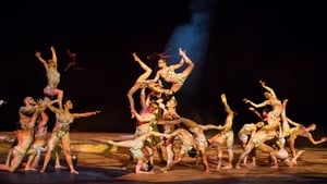 One Night for One Drop: Imagined by Cirque du Soleil