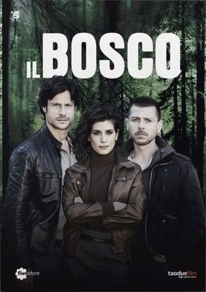 Il Bosco – Dark Forest (2015)