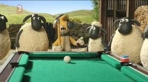 Shaun the Sheep Season 2 Episode 36