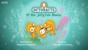 The Octonauts Season 1 Episode 34