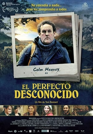 The Perfect Stranger-Colm Meaney