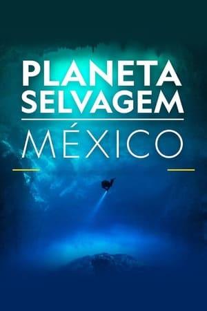 Planeta Selvagem: México