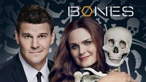 poster Bones