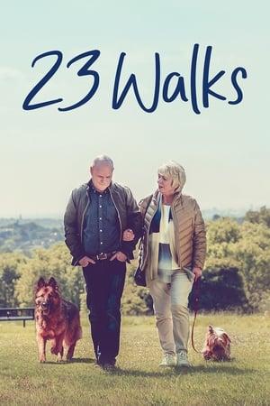23 Walks-Azwaad Movie Database