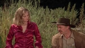 The Return (1980)