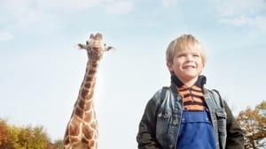 My Giraffe 2017