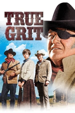 True Grit (1969) is one of the best movies like C'era Una Volta Il West (1968)