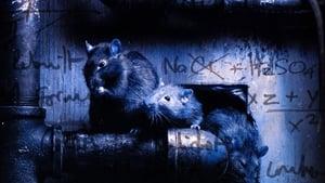 مشاهدة فيلم Altered Species 2001 مترجم أون لاين بجودة عالية