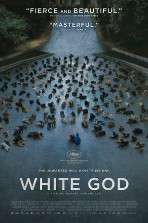 Image White God