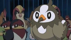 Pokémon Season 10 : A Staravia Is Born!
