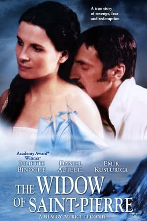 The Widow of Saint-Pierre-Philippe Magnan