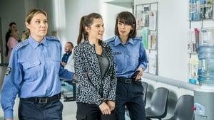Zakochani po uszy Season 4 :Episode 20  Episode 20
