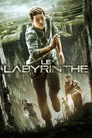 Play Le Labyrinthe