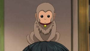 Gintama: 5×20