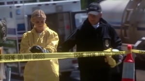 NCIS Season 11 : Episode 23