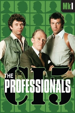 Professionals - Staffel 1