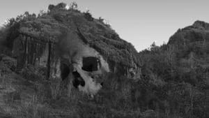 Skull (2018)