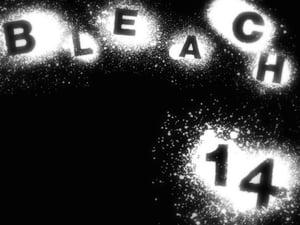 Bleach: 1×14