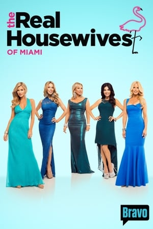 Image The Real Housewives of Miami