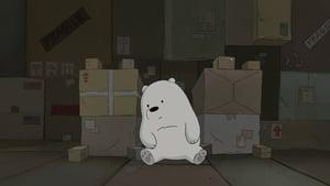 We Bare Bears Season 1 Episode 17