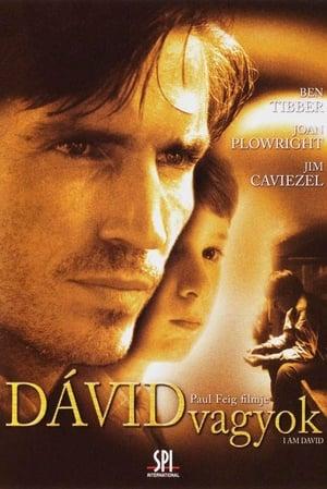 I Am David film posters