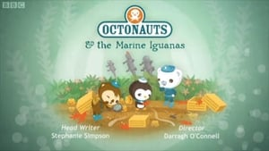 The Octonauts Season 1 Episode 43