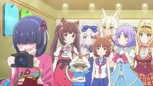 Nekopara 1. Sezon 12. Bölüm (Anime) izle