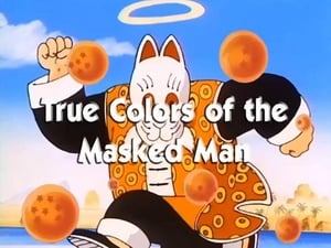 View The True Colors of the Masked Man Online Dragon Ball 6x9 online hd video quality