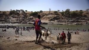 Soudan guerre du Tigre sur l autre rive (2021)