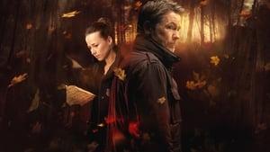 Cardinal (2017), serial online subtitrat în Română