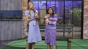 Rachael Ray Season 13 :Episode 132  Jennifer Garner On Why She's Saying