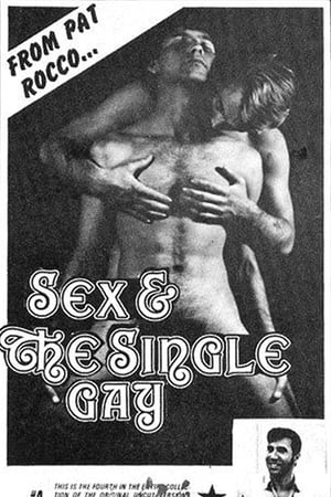 Watch Sex and the Single Gay online