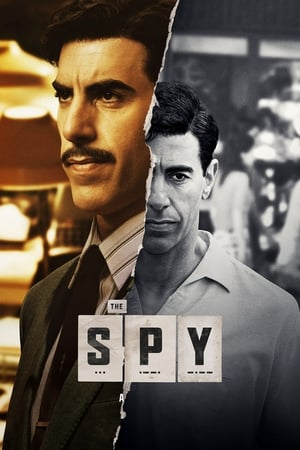 Baixar The Spy 1ª Temporada (2019) Dublado via Torrent