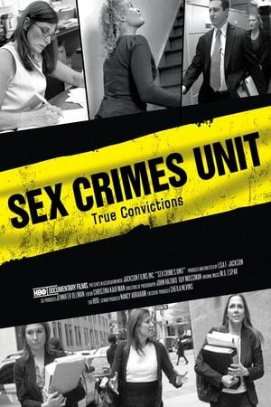 Sex Crimes Unit (2011)