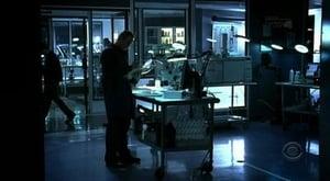 HD series online CSI: Crime Scene Investigation Season 6 Episode 11 Werewolves