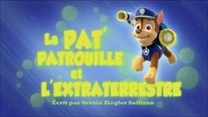 PAW Patrol: 2×1