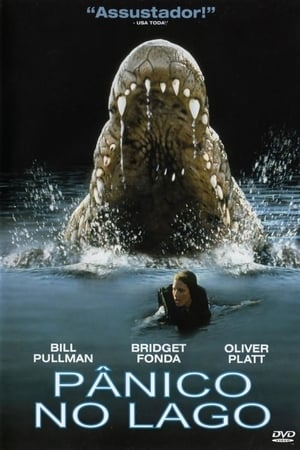 Panico no lago Torrent, Download, movie, filme, poster