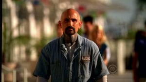 CSI: Miami - Temporada 9