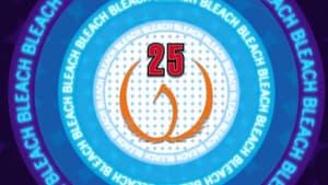 Bleach: 1×25