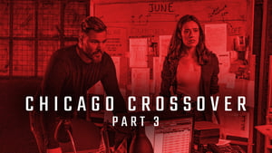 Chicago P.D.: Distrito 21: 7×4