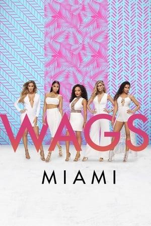 Image WAGS Miami