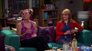 The Big Bang Theory: 4×8