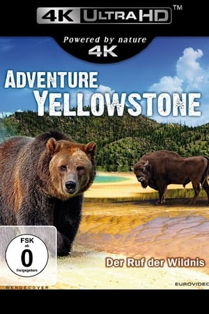 Adventure Yellowstone - Der Ruf der Wildnis (2013)