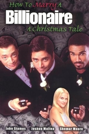 How to Marry a Billionaire: A Christmas Tale-Shemar Moore